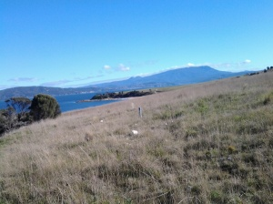 Towards Cape Deliverance and Mt Wellington