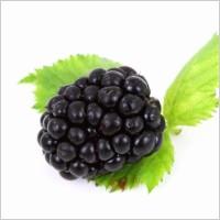 blackberry_186056