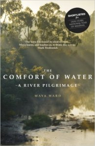 The Comfort of Water book cover