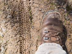 stock-photo-64271807-walking-boot-and-bike-tread-marks-on-muddy-trail