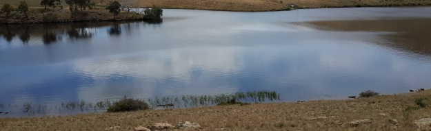 Meadowbank Lake - Nov15 section larger photo.jpg