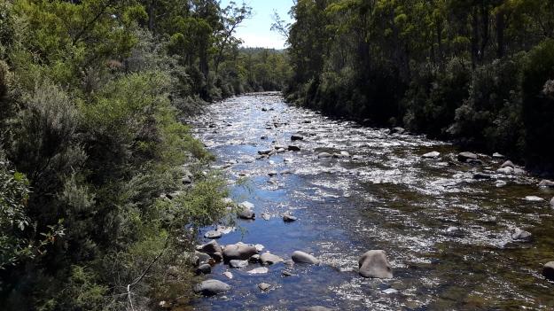 20160115_112146Florentine river.jpg