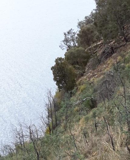 Brandon water edge cliffs