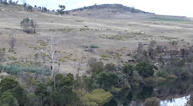 Hills near Meadowbank dam.jpg